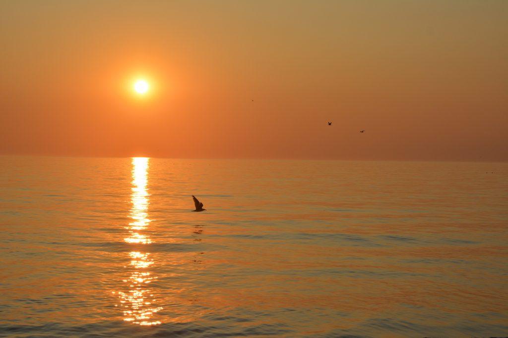 en lun sommeraften ved Vejlby Klit, Vesterhavet (25.08.2019)